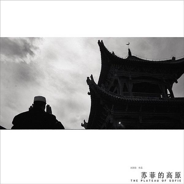 苏菲的高原五   刘劲勋摄