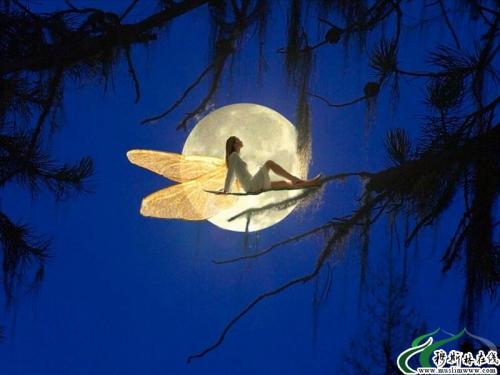 月亮美女艺术_做个月亮女人