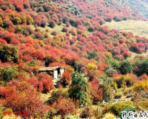 娘娘山风景区