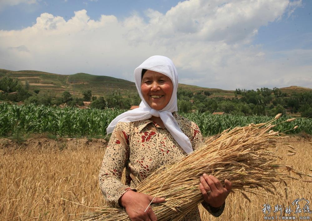 董宏征 《在田间劳动的回族妇女》