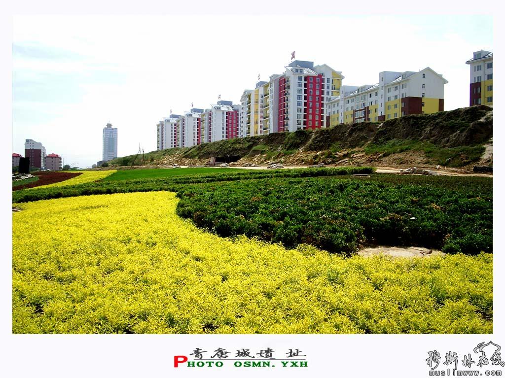 青唐城遗址·南滩古城公园 (冶晓辉摄)