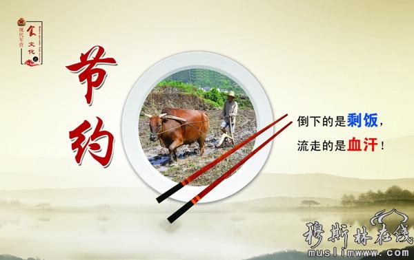 中国伊斯兰文化节约理念及当代意义