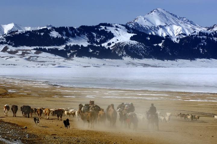 马背上的民族--哈萨克转场。伊犁清风摄