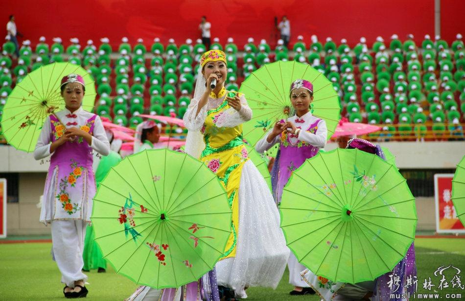 张家川回族自治县成立60周年庆祝大会隆重举行(高清组图)