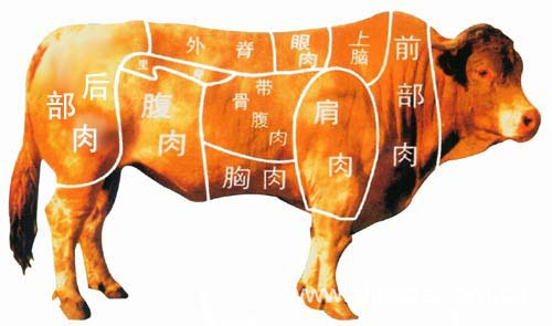 清真牛羊肉及牛副产品的多种加工生产企业.__兰州伊洁清真肉食品有限公司