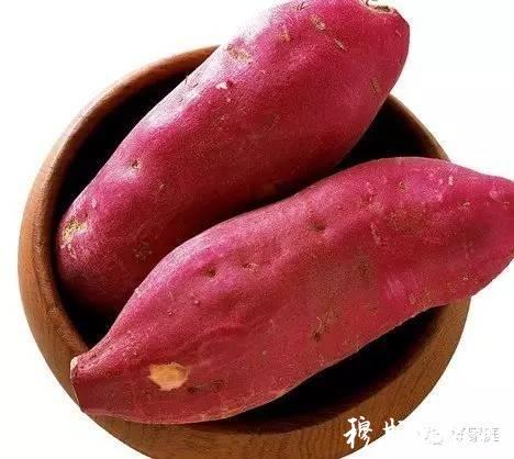 五样蔬菜简笔画