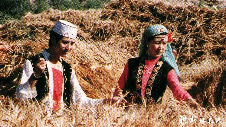 马明良:给全体撒拉族同胞的一封公开信!