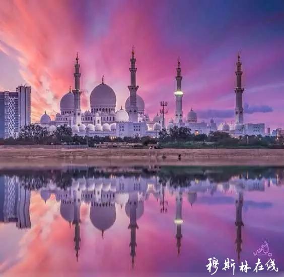 60 张神圣的清真寺,简直美翻了
