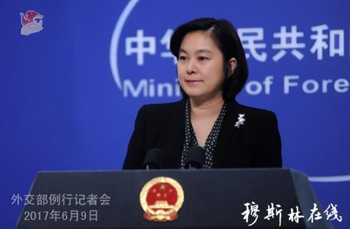 """华春莹就 """"伊斯兰国""""极端组织声称杀害2名中国公民答记者问"""