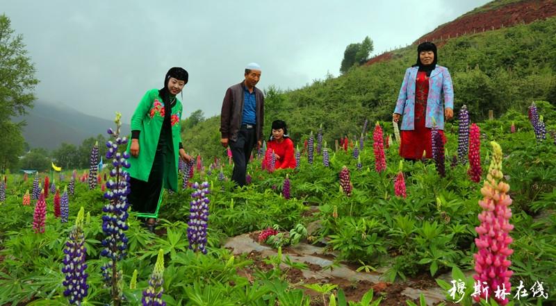 有梦想终会开花,一个农村残疾妇女马德花的创业路