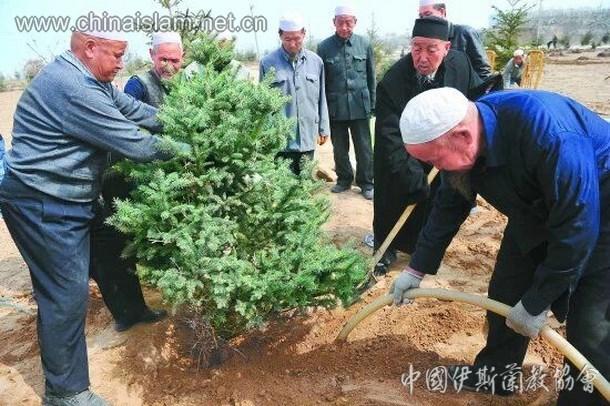兰州伊斯兰教灵明堂开展春季植树活动