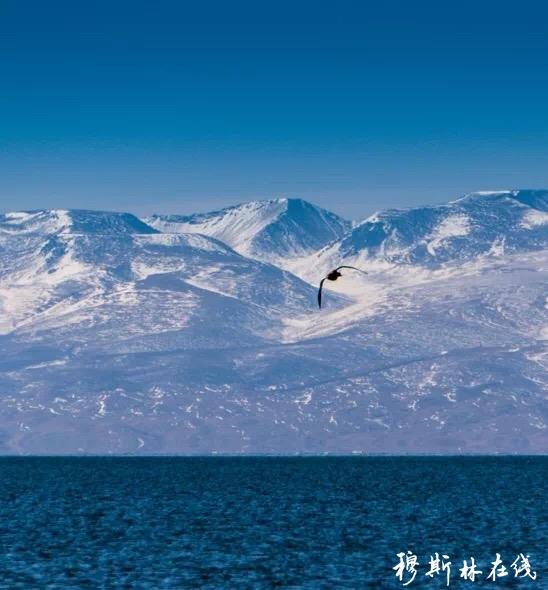 青海湖精美图片