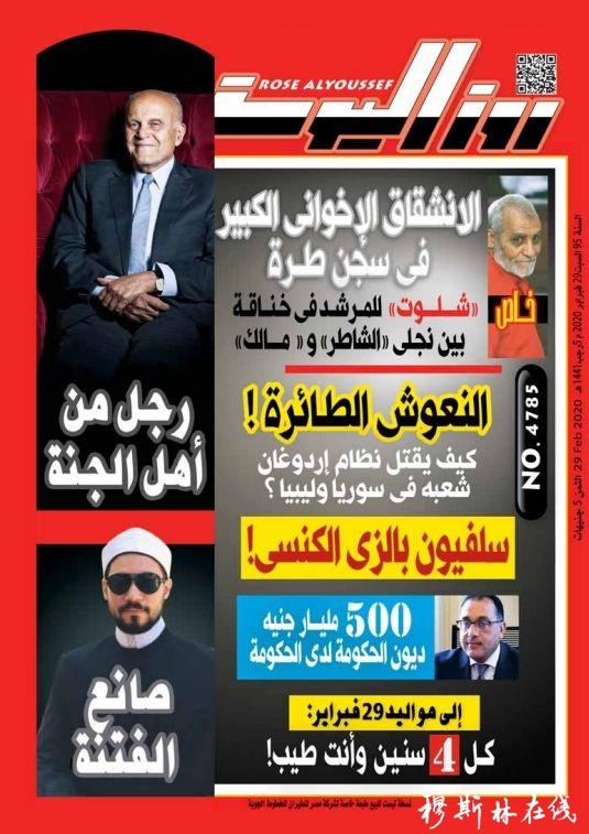 王广大:阿拉伯国家一致支持中国抗疫